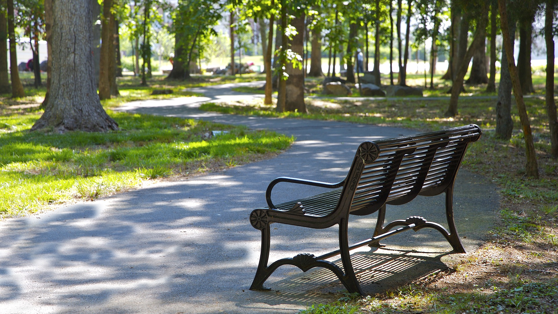 A bench along one of the many lovely walking paths throughout Brambleton.